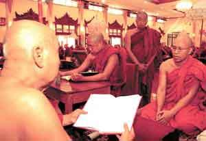 dhamma-study.jpg